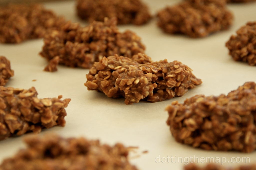 coconut oil and flaxseed no bake cookie recipe