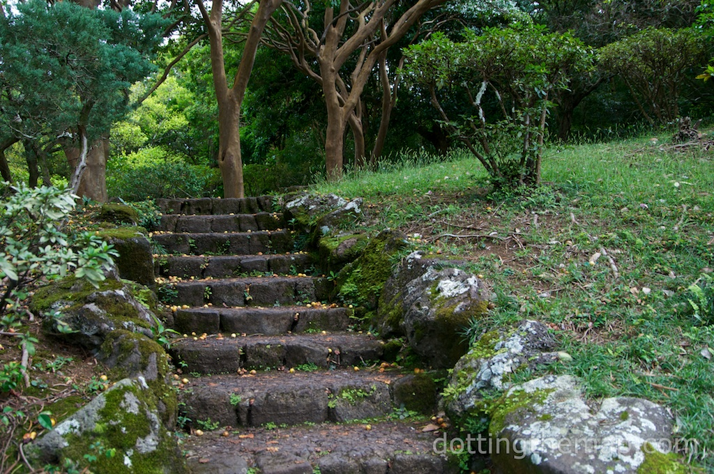 steps at Byoda-In Temple Oahu