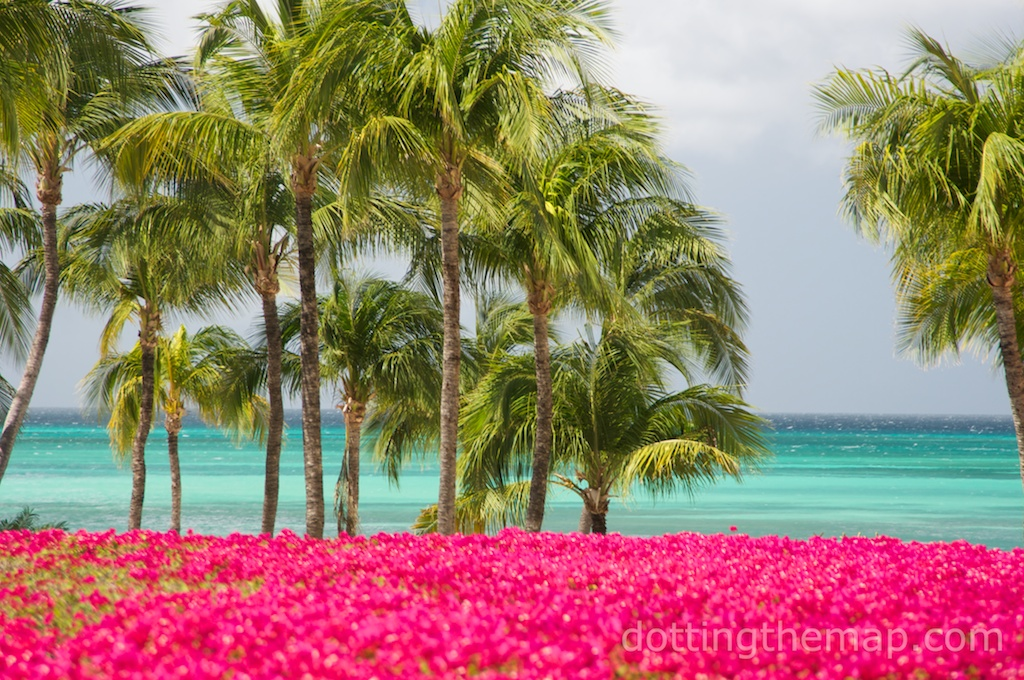 Aruba beach ocean