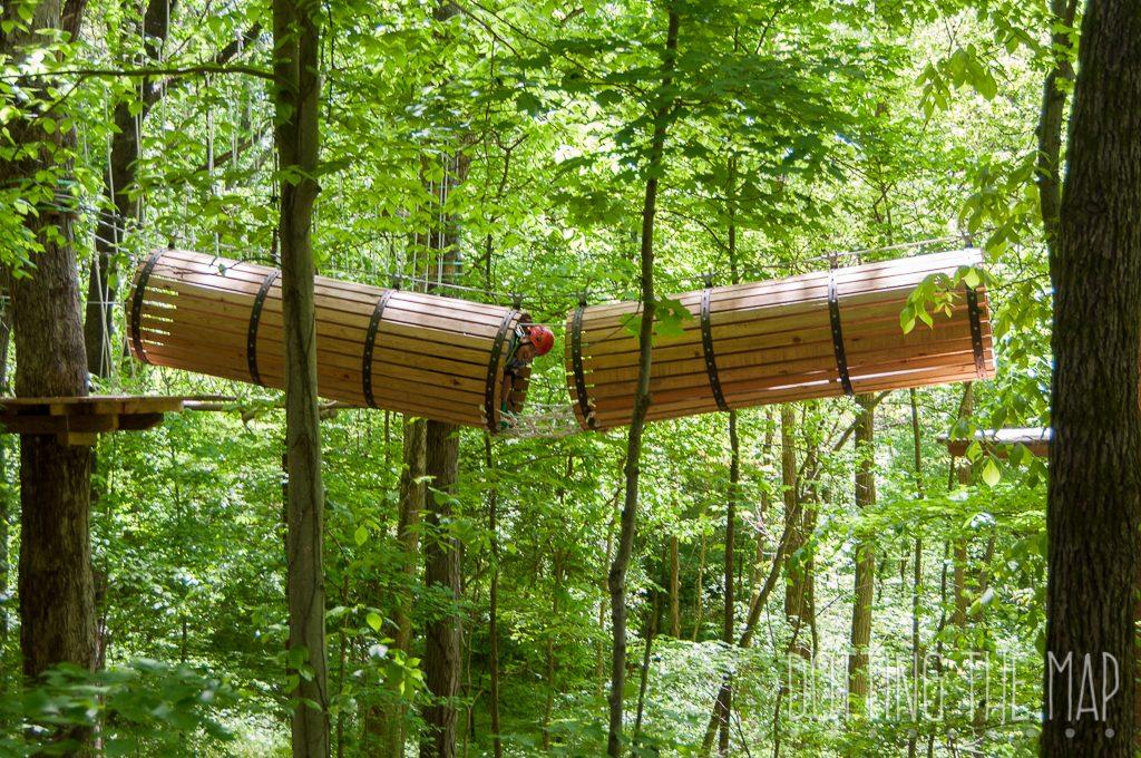 Best Of Ijams Nature Center
